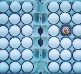Nytårsinspiration: Krug x Egg
