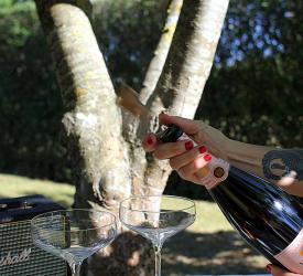 Veuve Clicquot Rose - Den perfekt sommerrose?