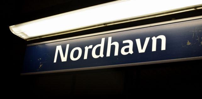 Falken er landet: Indtager toppen af Nordhavns Silo