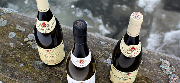 Hvid Bourgogne: Overpriced eller alle pengene værd?